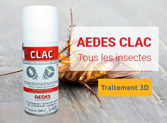 Aedes Clac