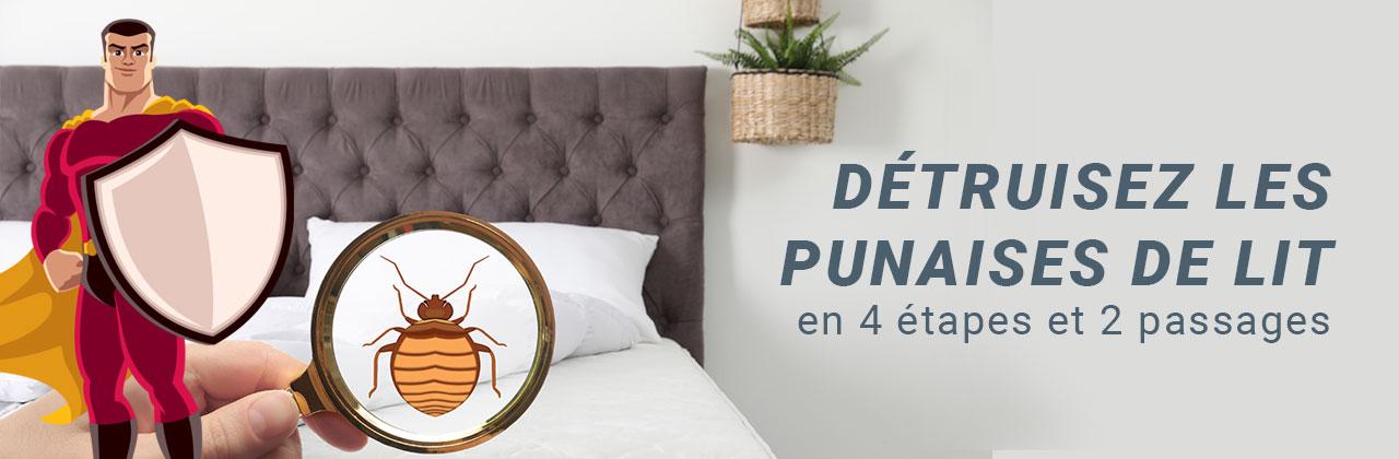 Détruisez les punaises de lit