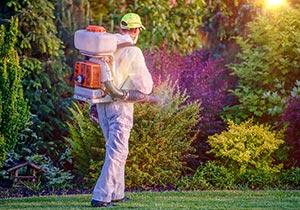 Quelles sont les protections indispensables pour les insecticides ?