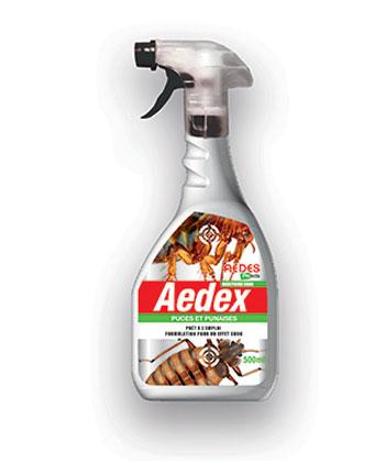Aedes Aedex puces et punaises