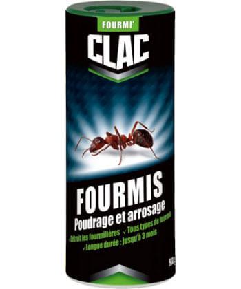Clac Fourmis