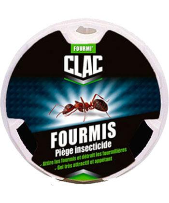 Clac Fourmis Piège Insecticide