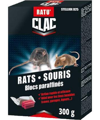 Clac Rats Souris Blocs Paraffinés