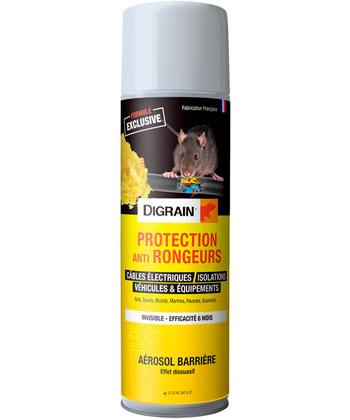 Digrain Protection Anti Rongeurs