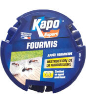 Kapo Expert Fourmis