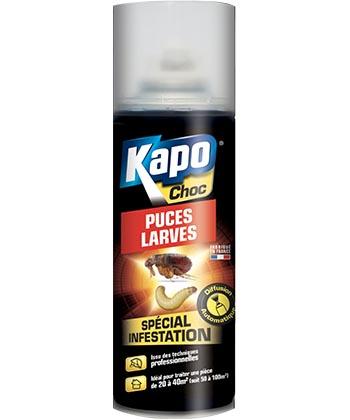 Kapo Choc Puces Larves
